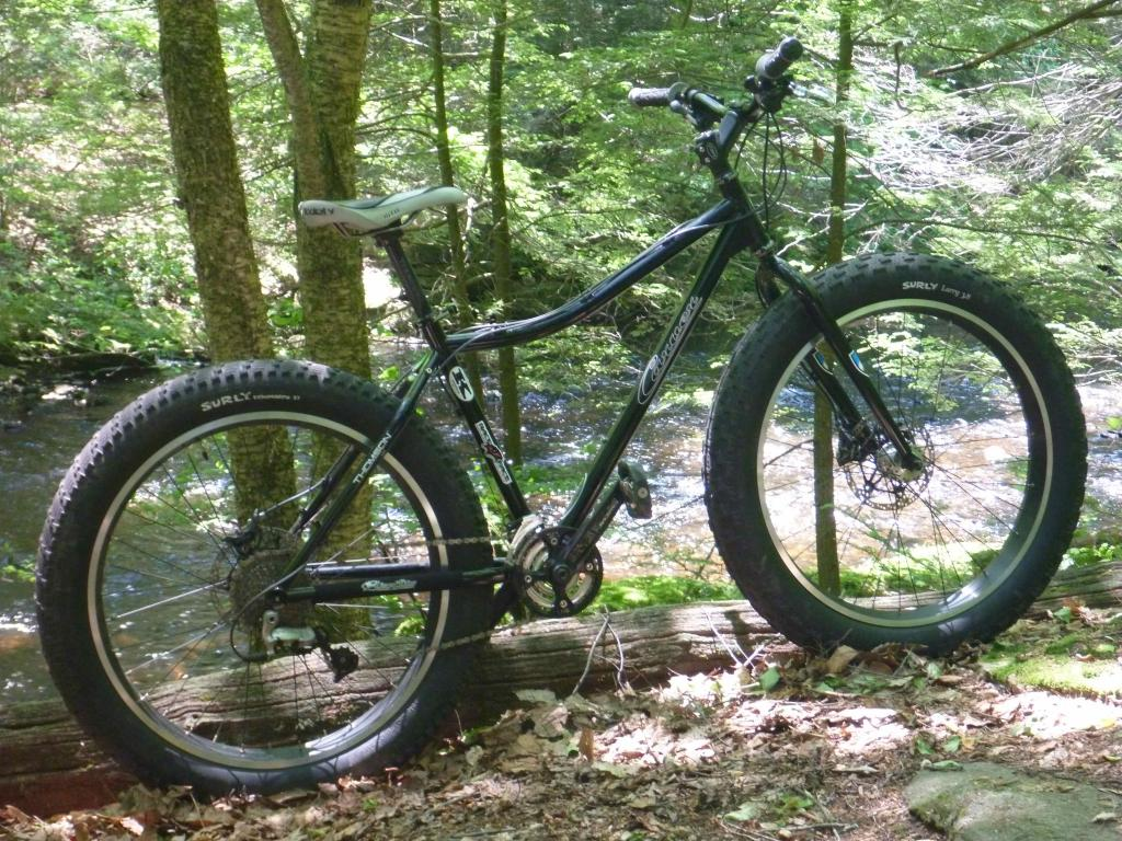 Daily fatbike pic thread-carver2.jpg