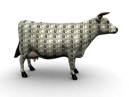 Name:  Cash-Cow.jpg Views: 1574 Size:  27.9 KB