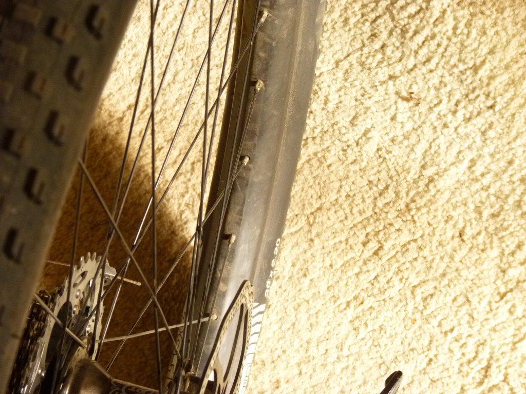 New Dt Swiss XR 1501 Spline wheels 29er-cb35.30rimxr1.jpg