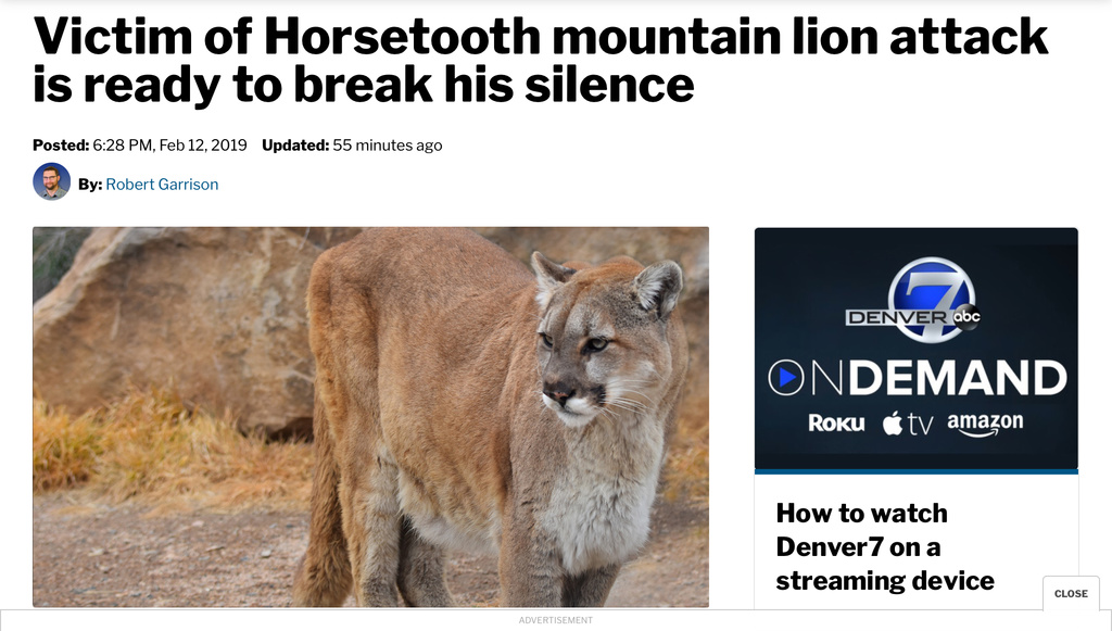 Mountain Lion Attack, Colorado.-cbb80d72-2413-4f28-80c6-76fe557dc2d7.jpg