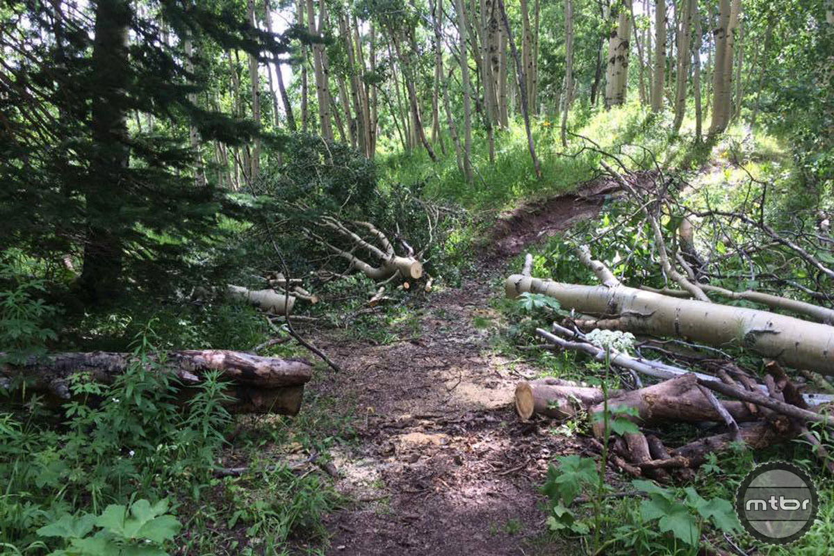 Those trail-blocking trees don't cut themselves. Photo courtesy CBMBA