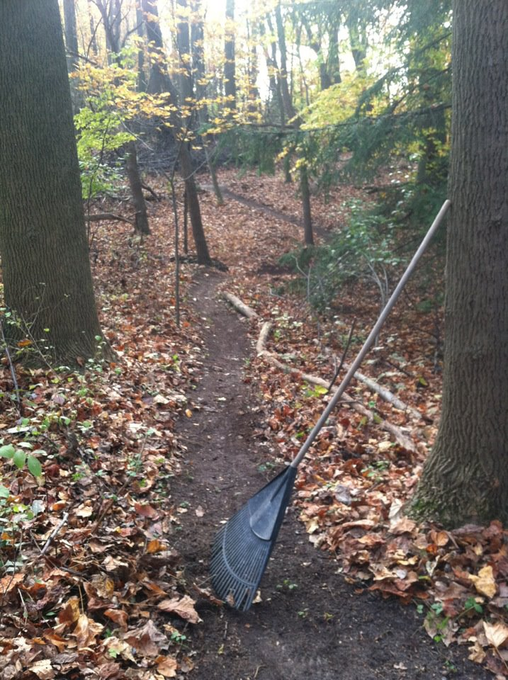 clearing trails of leave/ pine needles-ccc7.jpg