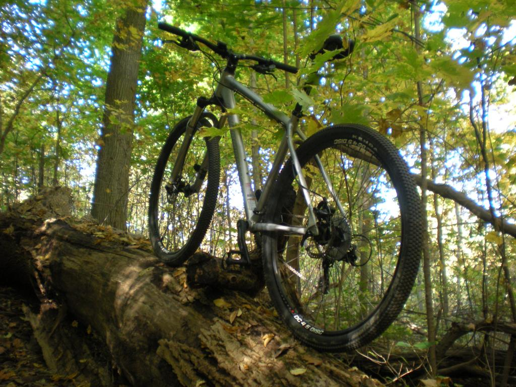 Post a pic of your Cannondale  29er-cdale-009.jpg