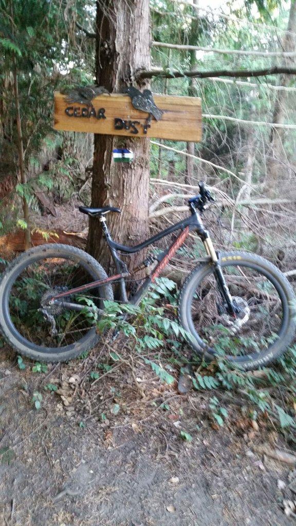 Bike + trail marker pics-cedar-dust.jpg