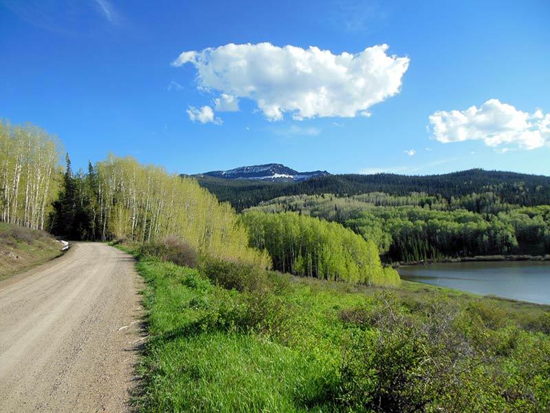 Trail Pics-chapmanrd-1.jpg