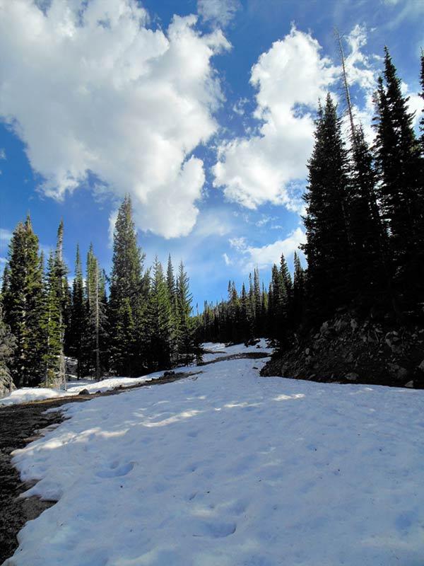 Trail Pics-chapmanrd-2.jpg