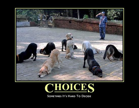 Motivational Posters-choices.jpg