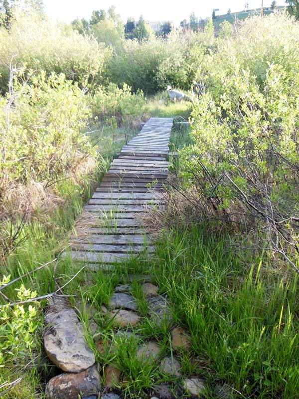 Trail Pics-chomps1.jpg