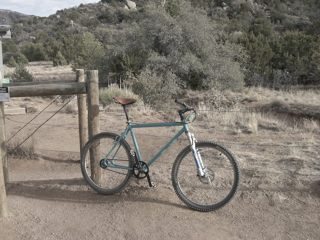 Custom Stolen Bike-chris1.jpg