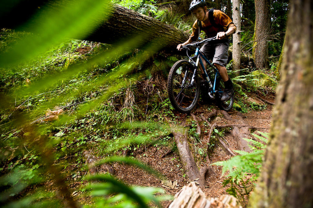 Line Choice and Trail Impact-chromag-pic.jpg