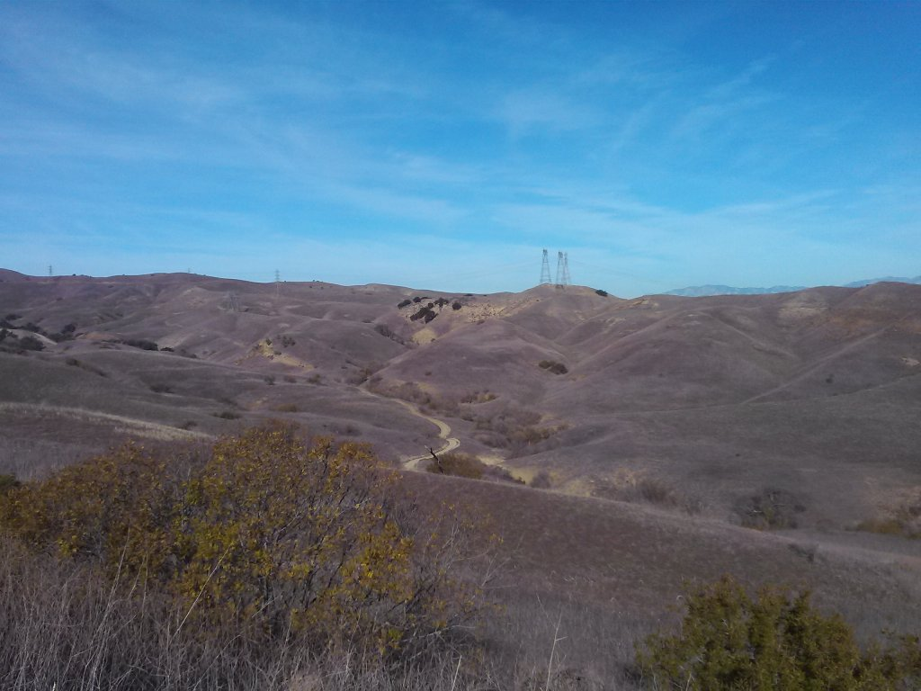 did you ride today?-chsp7.jpg