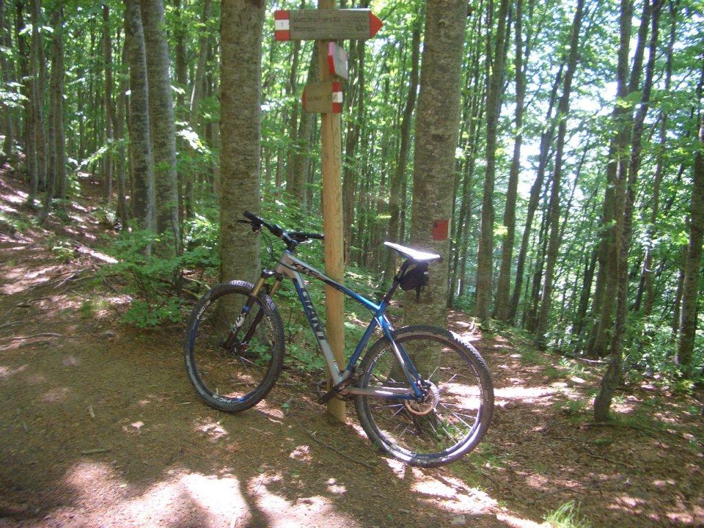 Bike + trail marker pics-cimg0007.jpg