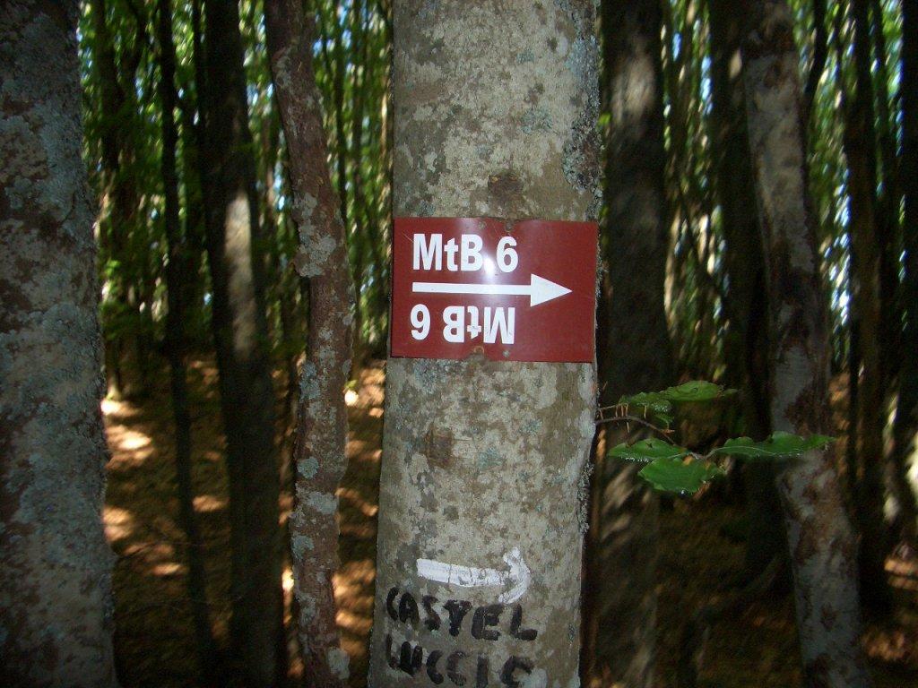Bike + trail marker pics-cimg0032.jpg
