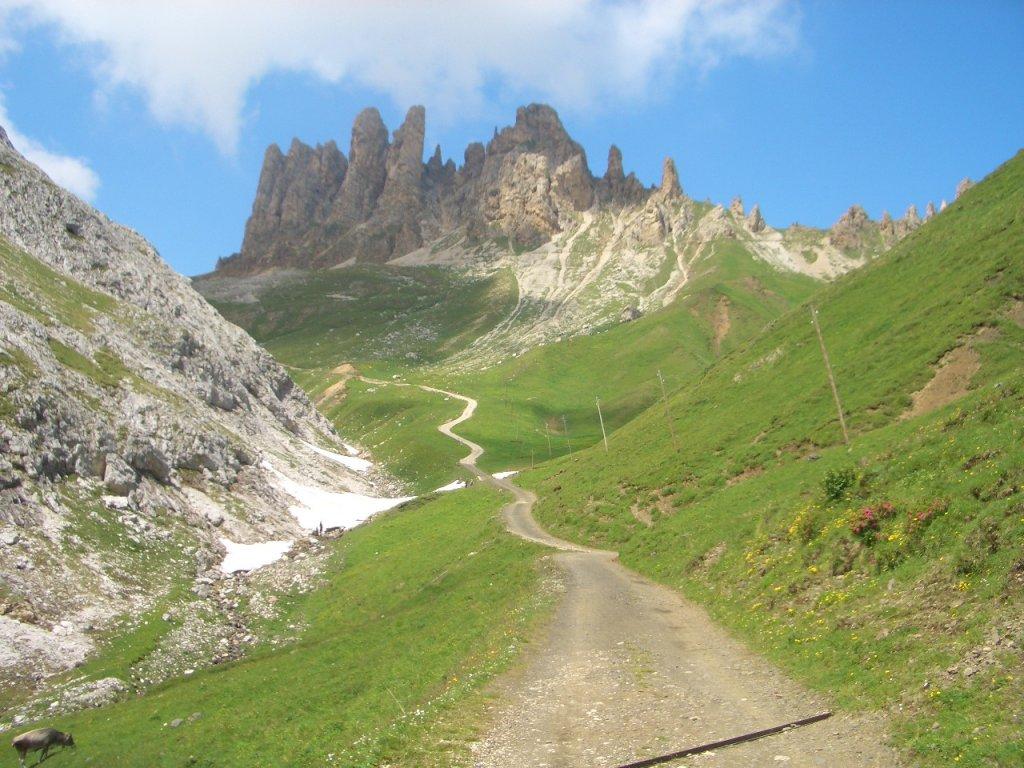 Italian Alps-cimg0038.jpg