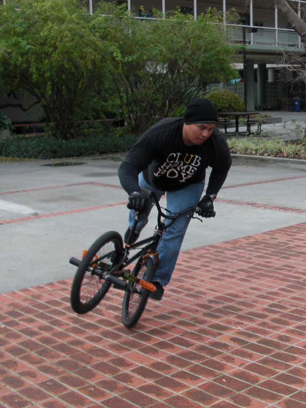 Bay Area Bike Park anywhere? (bmx style)-cimg0565.jpg