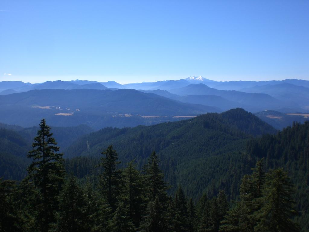 July MBO: Collective mountain biking passion-cimg0817.jpg