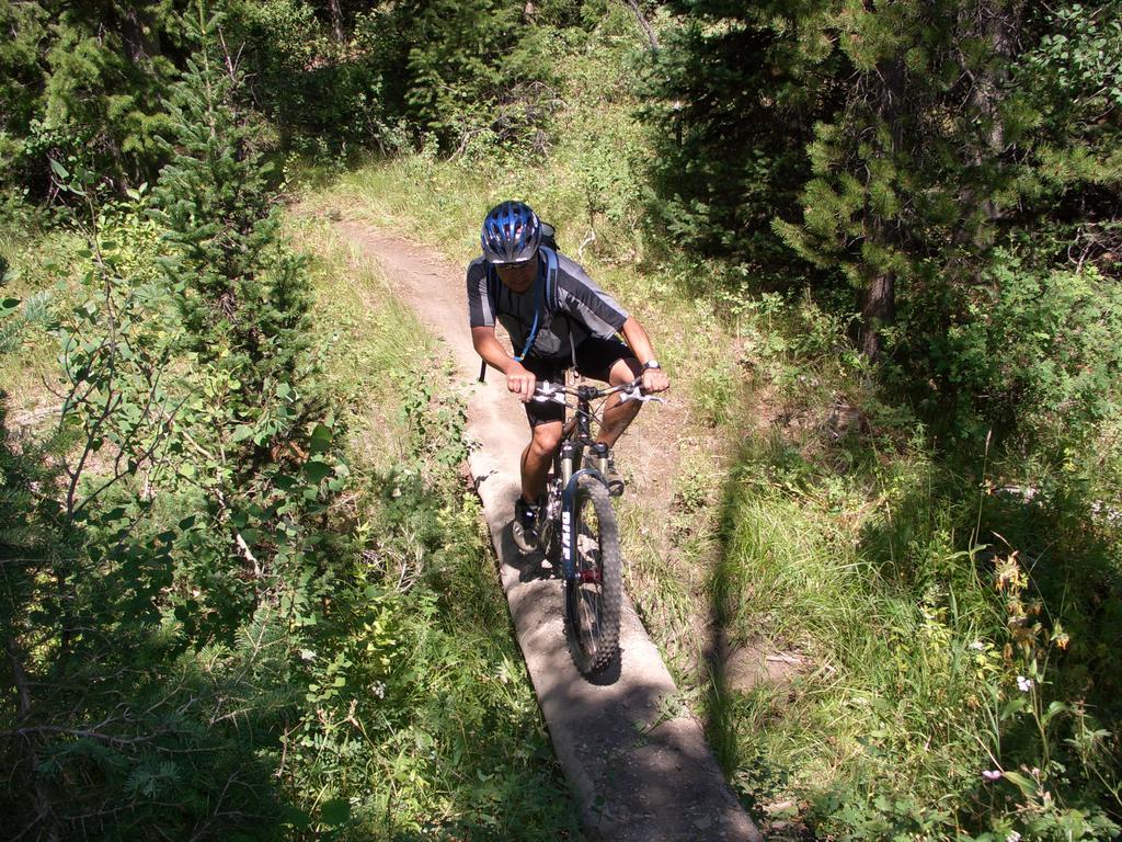 bike +  bridge pics-cimg1222.jpg