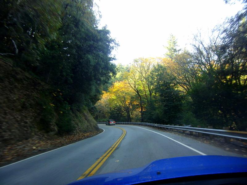 Assignment: Norcal Fall Photos-cimg2773.jpg