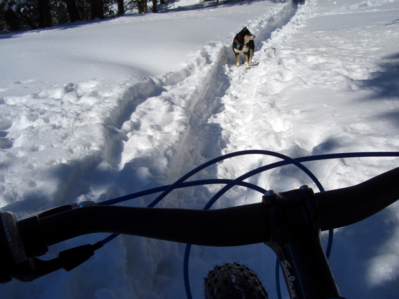 Front range fat bike ride pics-cimg5928%5B1%5D.jpg