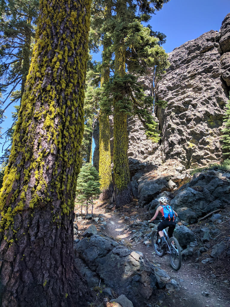 The Mills Peak Trail is complete! Check it out!-climbing-mills.jpg