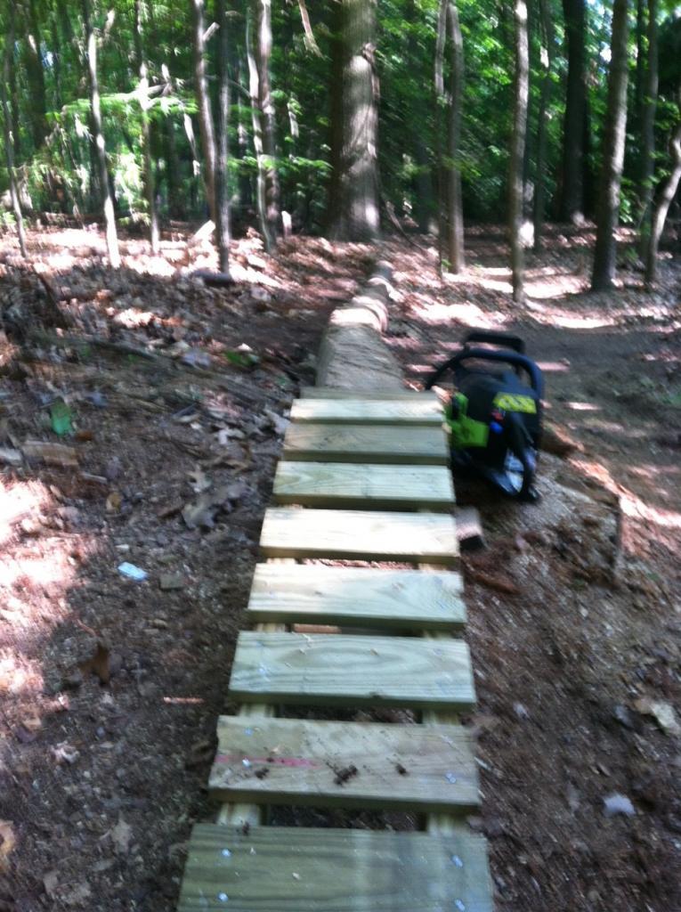 Newbie at building ladder bridges-close-up-1-mile-log.jpg