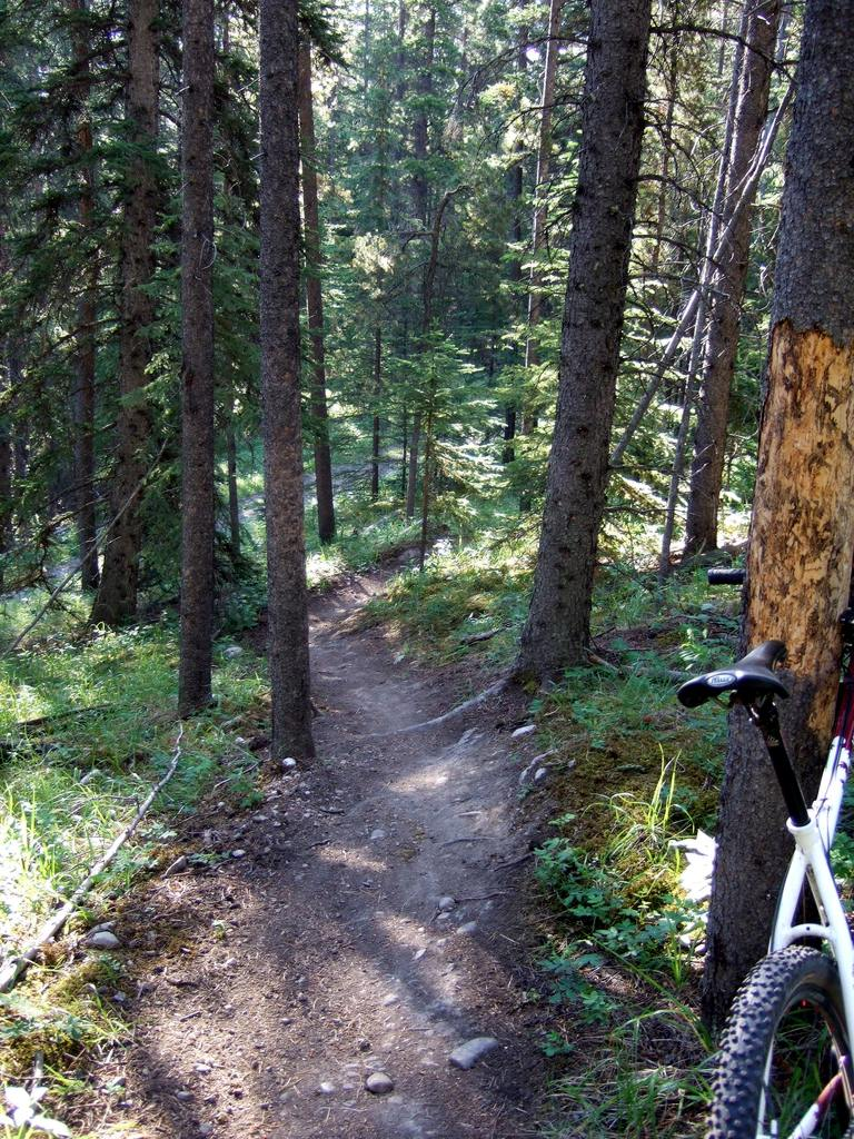 Upcoming Canmore Vacation - rental and trail suggestions-cnc12.jpg
