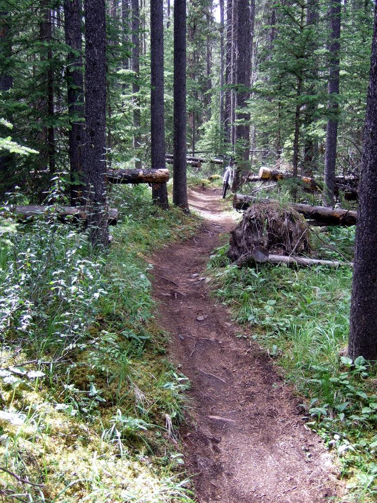 Upcoming Canmore Vacation - rental and trail suggestions-cnc2.jpg