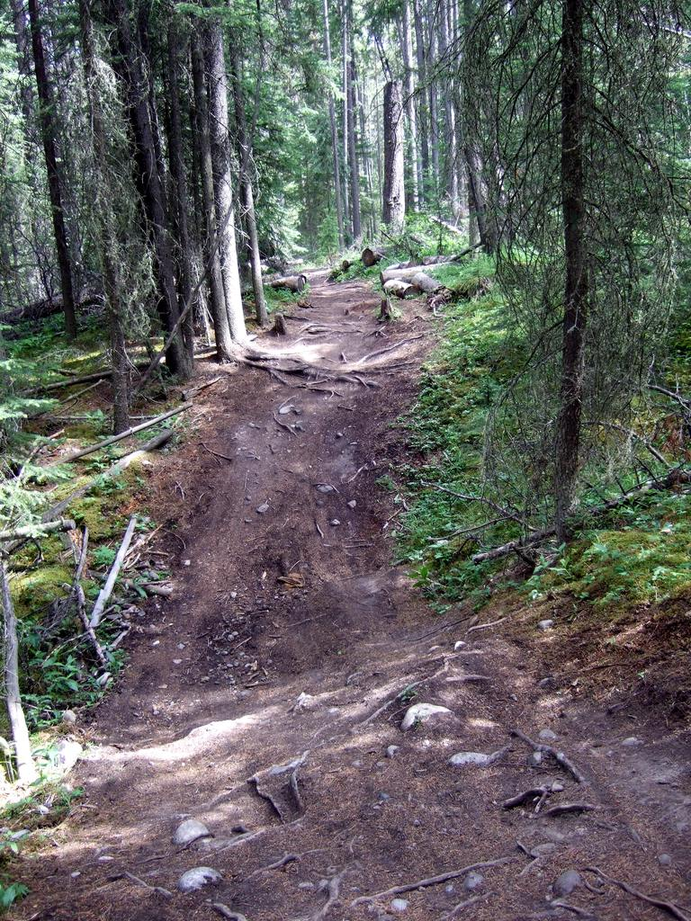 Upcoming Canmore Vacation - rental and trail suggestions-cnc6.jpg
