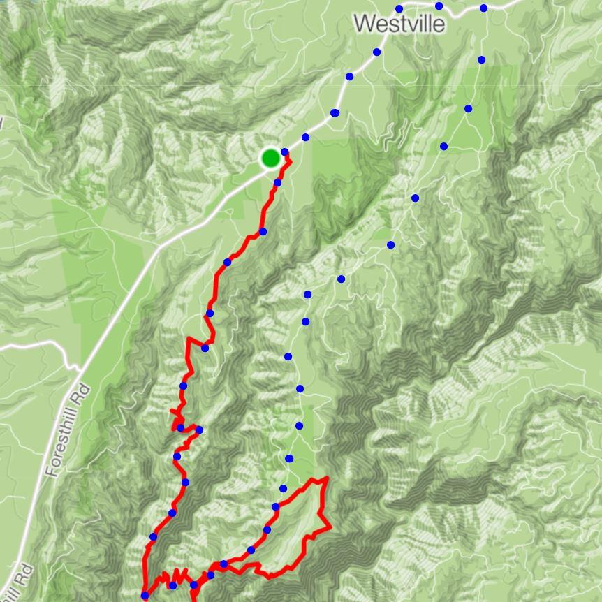 The sickest trail I've never heard of - Trail Peek is on to something here.-codfish-deadwood-loop.jpg