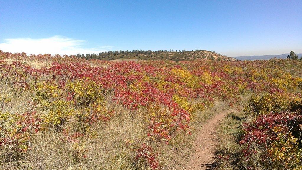 Front Range Riding - October 2013-color-red-resized.jpg
