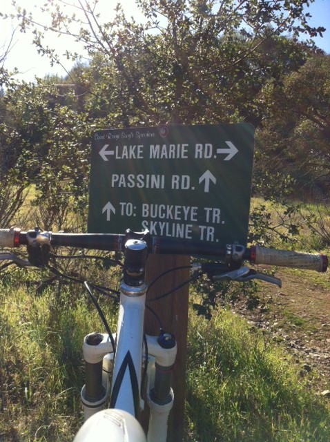 Bike + trail marker pics-confusing-trail-sign.jpg