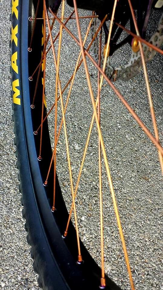 Canfield Riot Photo Thread-copper-spokes.jpg