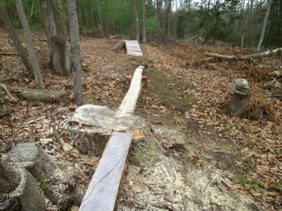 Chainsaw 101: proper way to plane a log-copy-hcga-work-11-20-11-002_900x900.jpg