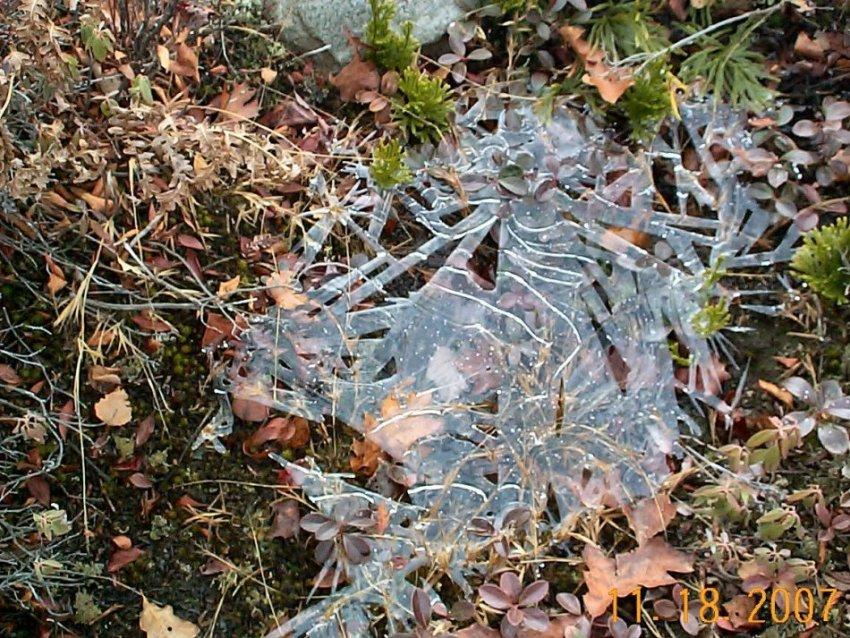 Moosic Mt. aka Earl's Preserve at Noon Saturday 9/1/12-copy-nc-wrokday-11-18-07-004.jpg