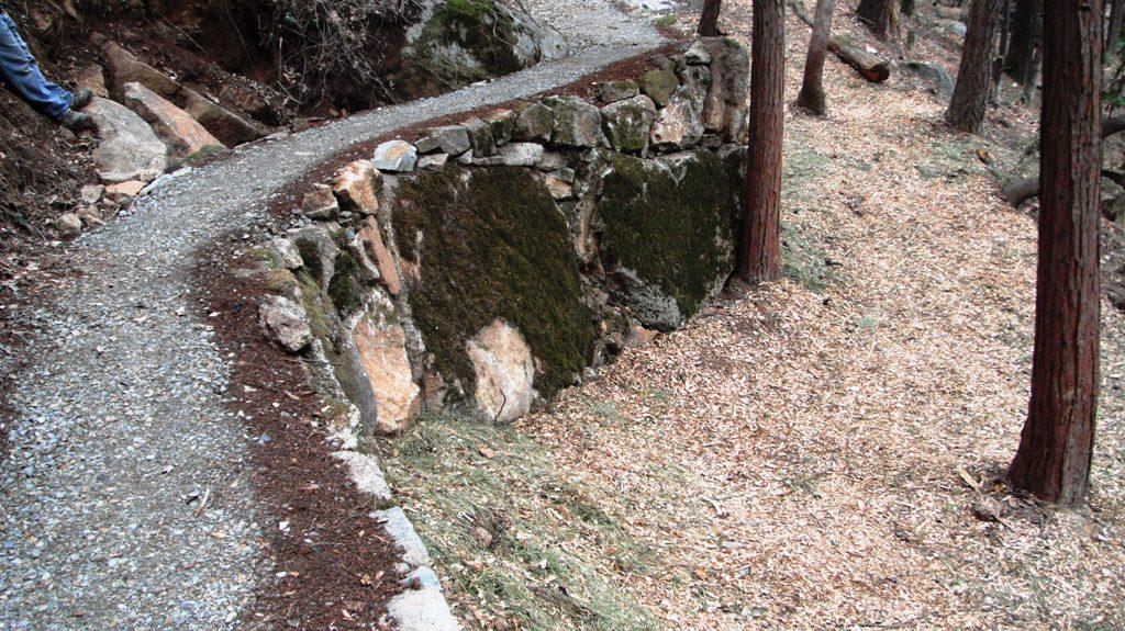 Character Driven Trails-copy-wall-moss-boulder.jpg