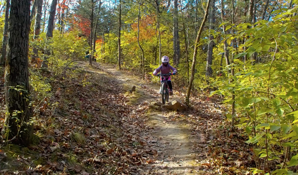 Kid's Mountain or Road Bike Ride Picture Thread-cosmo-11-10-17-11.jpg
