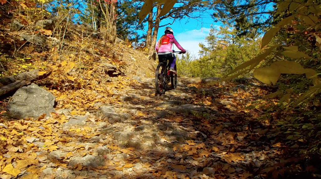 Kid's Mountain or Road Bike Ride Picture Thread-cosmo-11-10-17-134.jpg