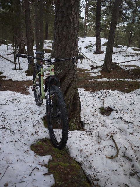 Post pics of your FULLY RIGID SS 29er-cotic_twister.jpg