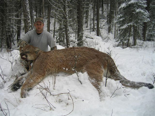 Cougars aus der canadaWir Dating-Website kostenlos