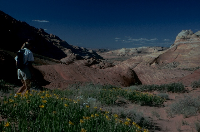 Foto Friday 18 April 2014 - Total eclipse version-coyote-buttes004.jpg