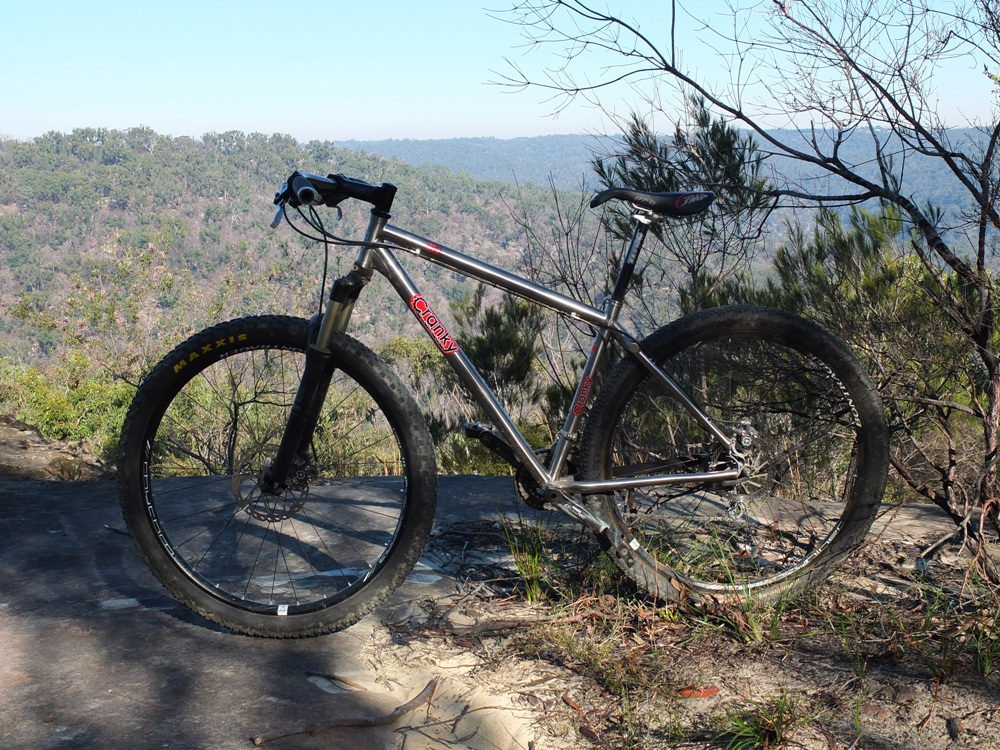 Post Pictures of your 29er-cranky29er1.jpg
