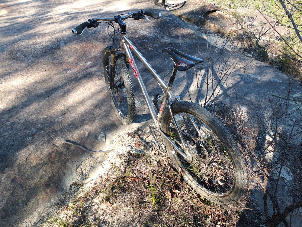 Post Pictures of your 29er-cranky29er4.jpg