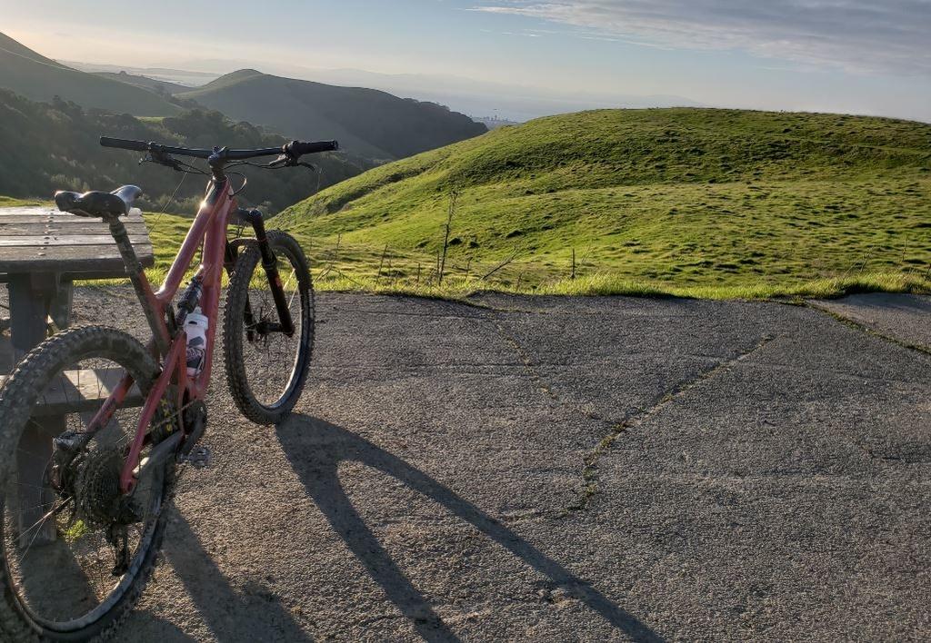 Crockett Hills - EXTREME bovine trail trashing!-crockett.jpg