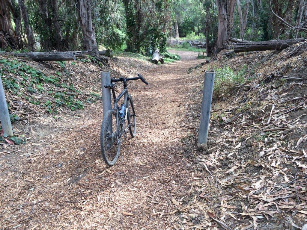 Cross Bikes on Singletrack - Post Your Photos-crossinchute.jpg