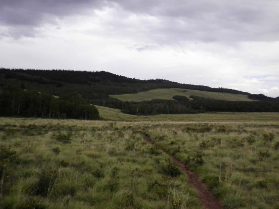 Colorado Trail Race, denied......-ctr-rs-1.jpg