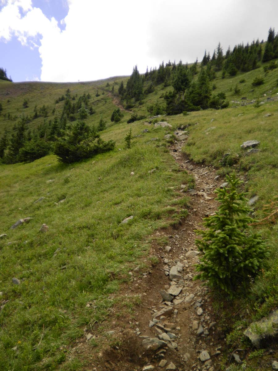 Colorado Trail Race, denied......-ctr-rs-11.jpg