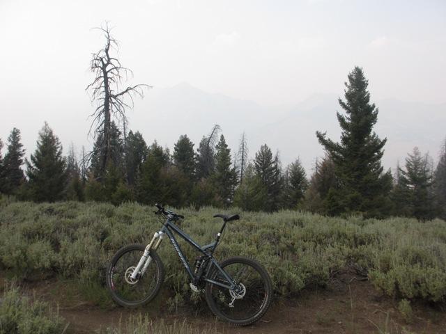 2012 Idaho TR-curly1.jpg
