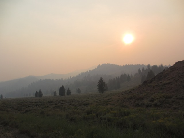 Halstead fire 19,000 acres in 24hr-curly3.jpg