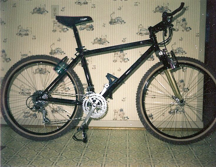 My first mountain bikes. GT Tequesta and Cycle Tech Wild Thing.-cycle-tech-wild-thing-1.jpg