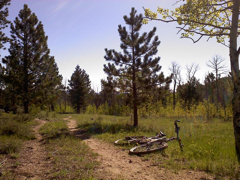 Mountain Biking in Red Feather Lakes?-daddgulch.jpg